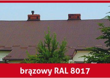 Farba na blachę Aksikor brązowy RAL 8017